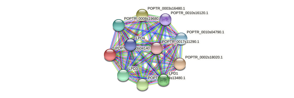 POPTR_0003s04140.1 protein (Populus trichocarpa) - STRING interaction network