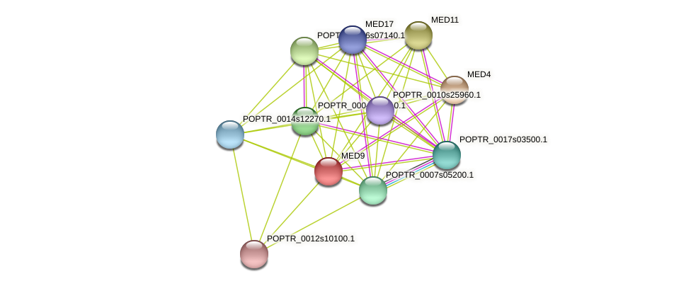 POPTR_0003s04510.1 protein (Populus trichocarpa) - STRING interaction network