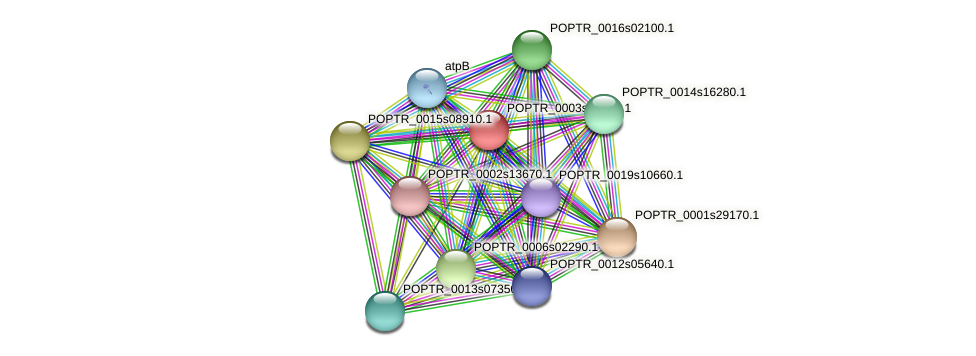 POPTR_0003s04550.1 protein (Populus trichocarpa) - STRING interaction network