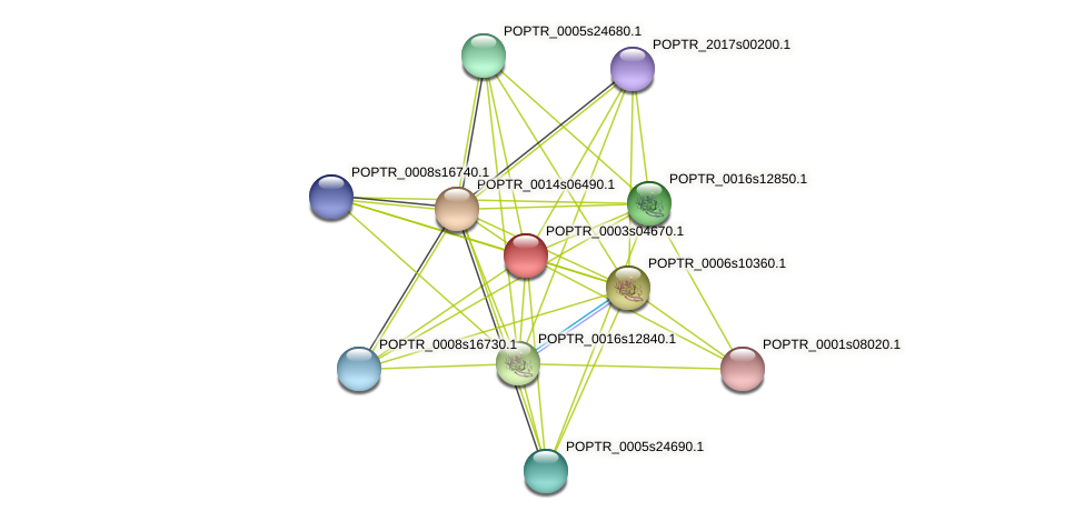POPTR_0003s04670.1 protein (Populus trichocarpa) - STRING interaction network