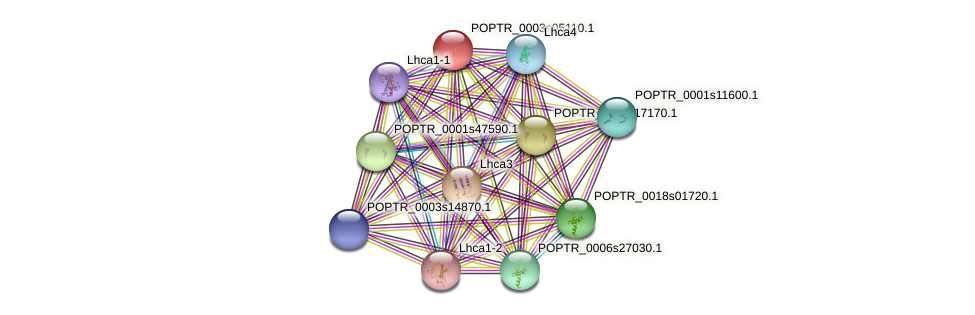 POPTR_0003s05110.1 protein (Populus trichocarpa) - STRING interaction network