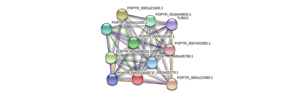 POPTR_0003s05270.1 protein (Populus trichocarpa) - STRING interaction network