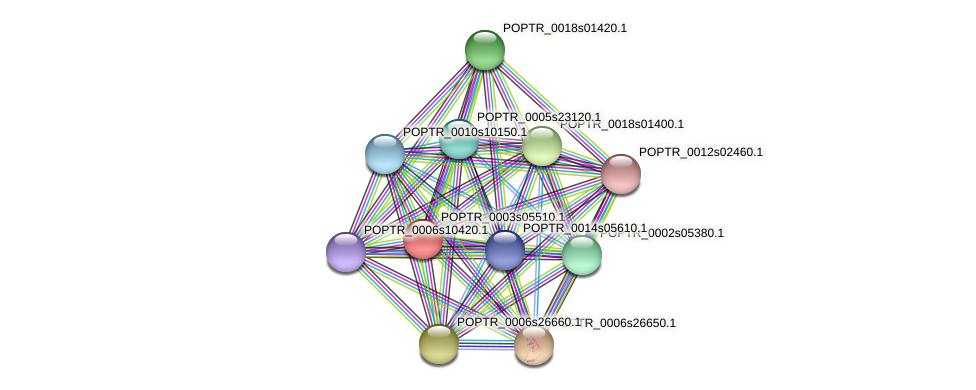 POPTR_0003s05510.1 protein (Populus trichocarpa) - STRING interaction network