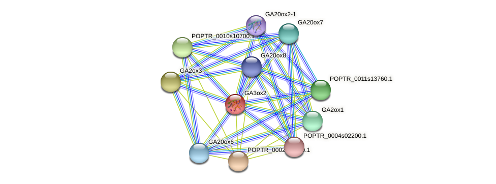 POPTR_0003s05610.1 protein (Populus trichocarpa) - STRING interaction network