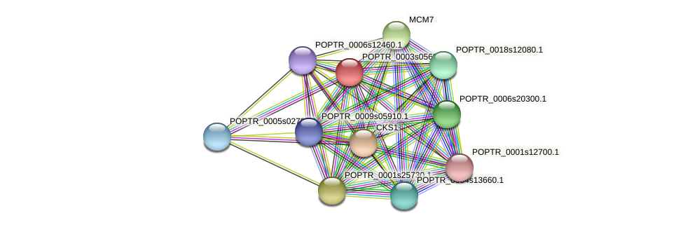 POPTR_0003s05690.1 protein (Populus trichocarpa) - STRING interaction network