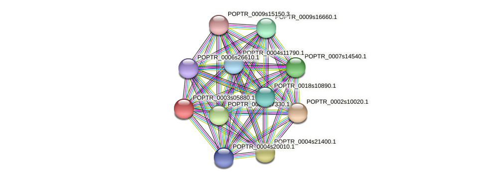 POPTR_0003s05880.1 protein (Populus trichocarpa) - STRING interaction network