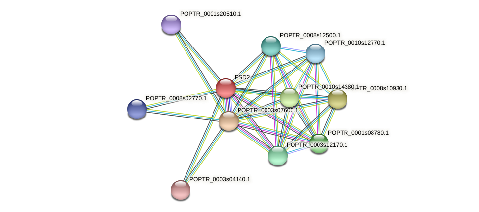 PSD2 protein (Populus trichocarpa) - STRING interaction network
