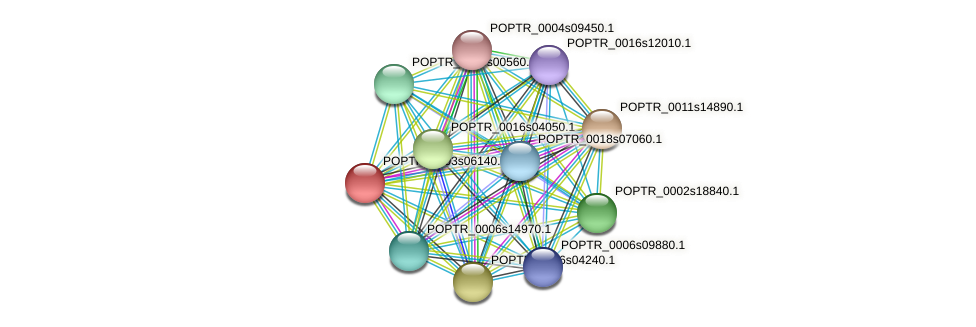 POPTR_0003s06140.1 protein (Populus trichocarpa) - STRING interaction network