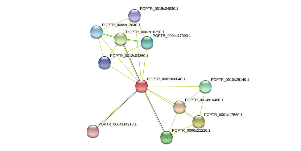 POPTR_0003s06640.1 protein (Populus trichocarpa) - STRING interaction network