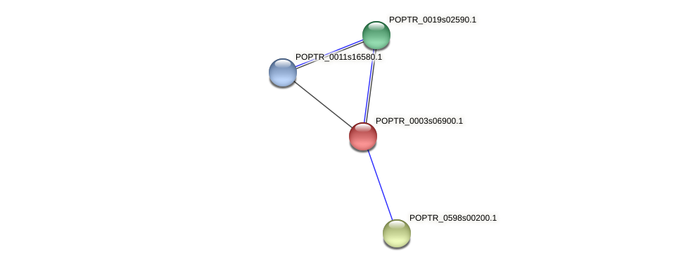 POPTR_0003s06900.1 protein (Populus trichocarpa) - STRING interaction network