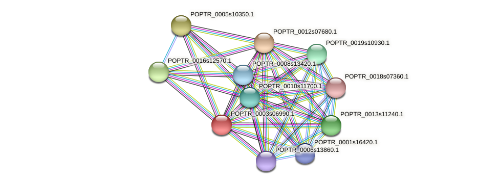 POPTR_0003s06990.1 protein (Populus trichocarpa) - STRING interaction network