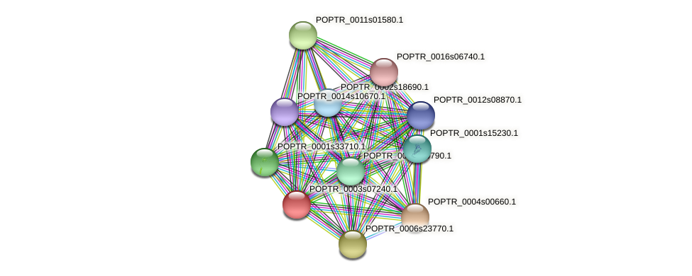 POPTR_0003s07240.1 protein (Populus trichocarpa) - STRING interaction network
