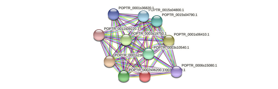 POPTR_0003s07640.1 protein (Populus trichocarpa) - STRING interaction network
