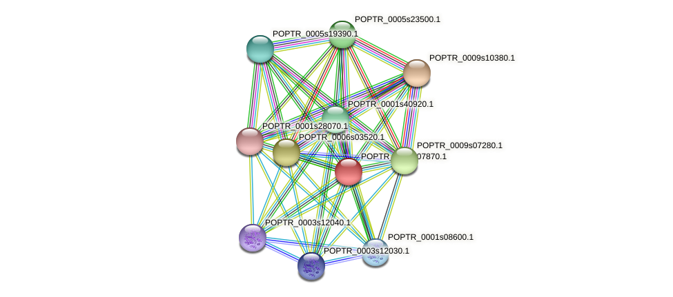 POPTR_0003s07870.1 protein (Populus trichocarpa) - STRING interaction network