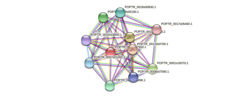 POPTR_0003s07950.1 protein (Populus trichocarpa) - STRING interaction network