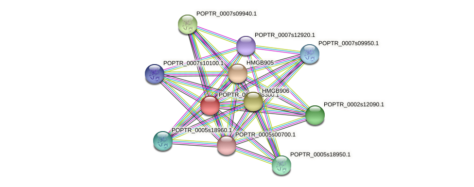 POPTR_0003s08300.1 protein (Populus trichocarpa) - STRING interaction network