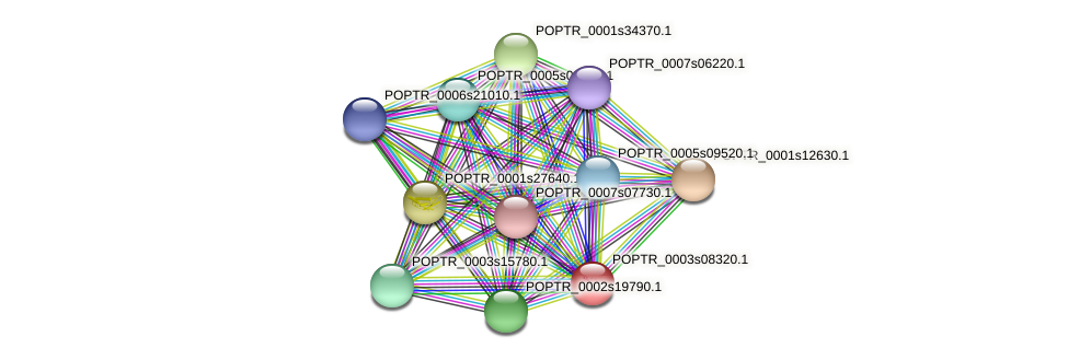 POPTR_0003s08320.1 protein (Populus trichocarpa) - STRING interaction network