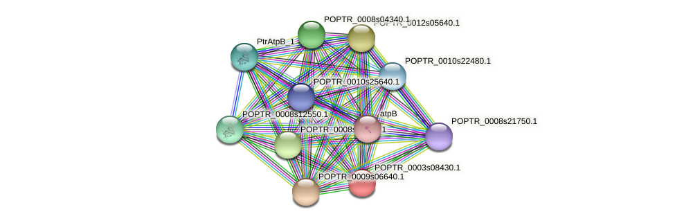 POPTR_0003s08430.1 protein (Populus trichocarpa) - STRING interaction network