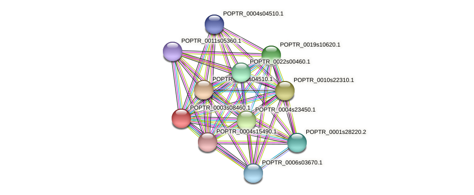 POPTR_0003s08460.1 protein (Populus trichocarpa) - STRING interaction network