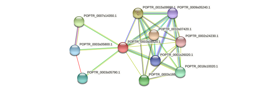 POPTR_0003s08520.1 protein (Populus trichocarpa) - STRING interaction network