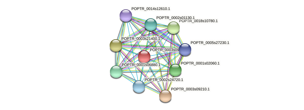 POPTR_0003s09390.1 protein (Populus trichocarpa) - STRING interaction network