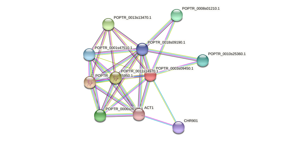 POPTR_0003s09450.1 protein (Populus trichocarpa) - STRING interaction network