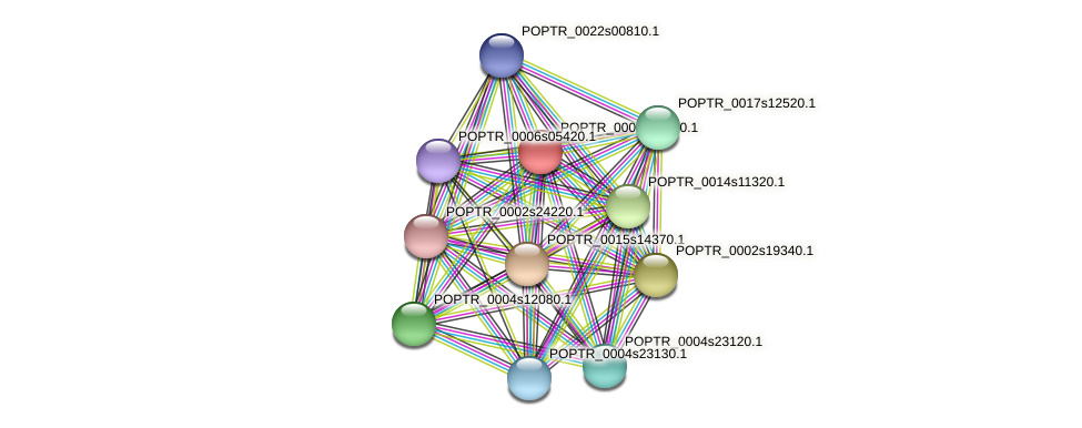 POPTR_0003s09760.1 protein (Populus trichocarpa) - STRING interaction network