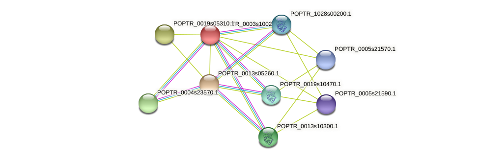 POPTR_0003s10020.1 protein (Populus trichocarpa) - STRING interaction network