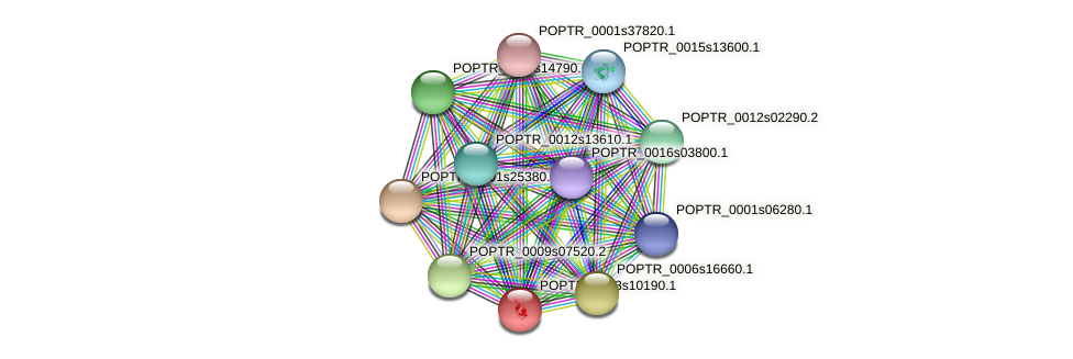 POPTR_0003s10190.1 protein (Populus trichocarpa) - STRING interaction network
