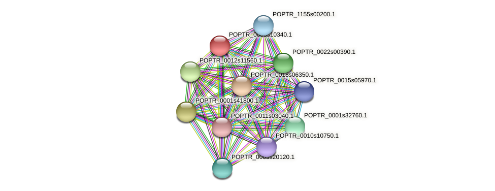 POPTR_0003s10340.1 protein (Populus trichocarpa) - STRING interaction network
