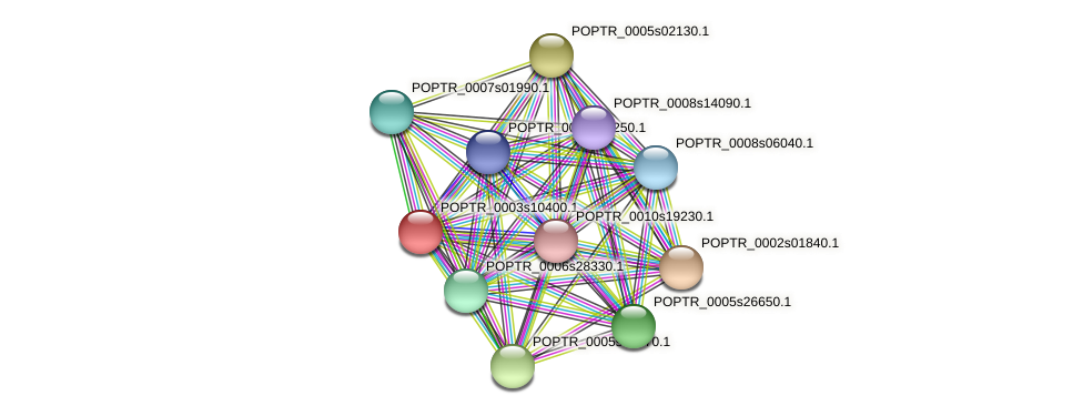 POPTR_0003s10400.1 protein (Populus trichocarpa) - STRING interaction network