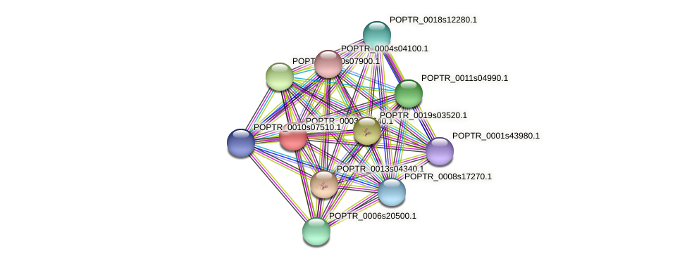 POPTR_0003s10640.1 protein (Populus trichocarpa) - STRING interaction network