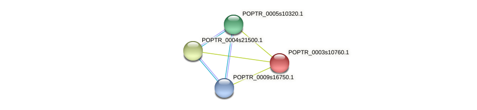 POPTR_0003s10760.1 protein (Populus trichocarpa) - STRING interaction network