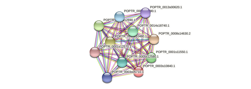 POPTR_0003s10840.1 protein (Populus trichocarpa) - STRING interaction network