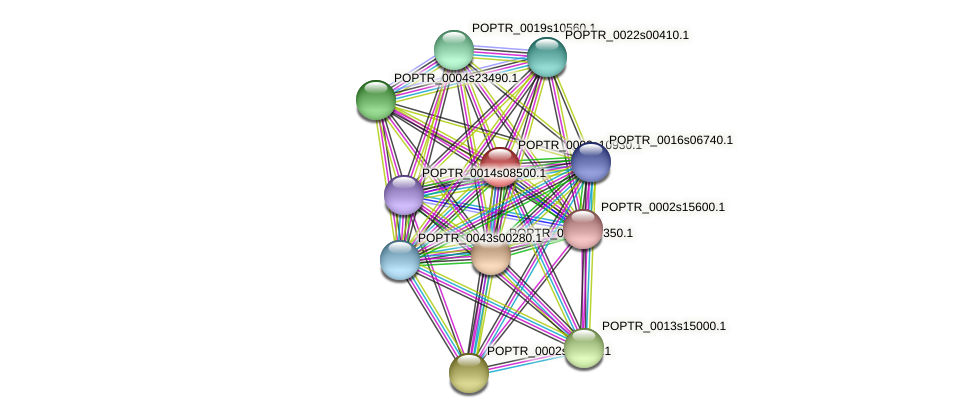 POPTR_0003s10930.1 protein (Populus trichocarpa) - STRING interaction network