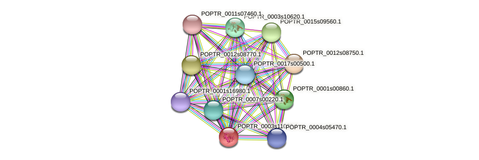 POPTR_0003s11030.1 protein (Populus trichocarpa) - STRING interaction network