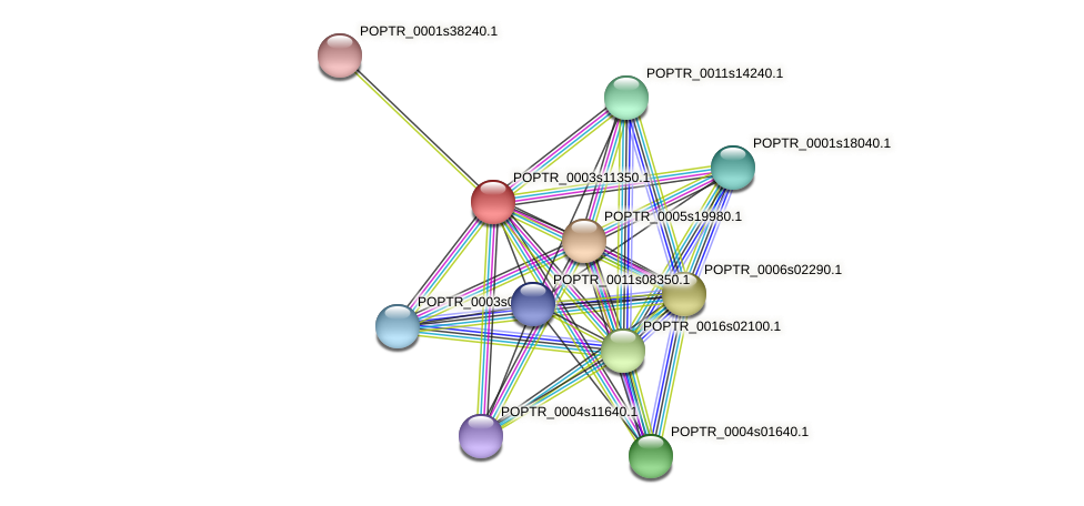 POPTR_0003s11350.1 protein (Populus trichocarpa) - STRING interaction network