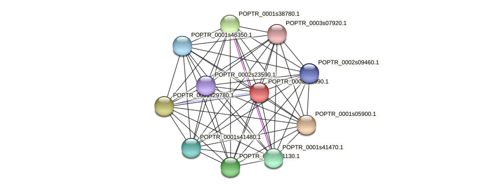 POPTR_0003s11990.1 protein (Populus trichocarpa) - STRING interaction network