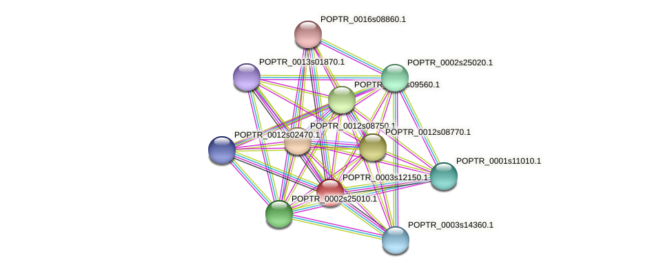 POPTR_0003s12150.1 protein (Populus trichocarpa) - STRING interaction network