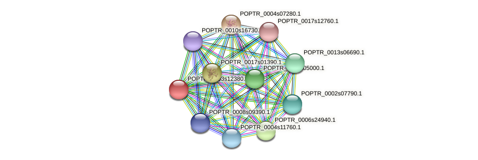 POPTR_0003s12380.1 protein (Populus trichocarpa) - STRING interaction network