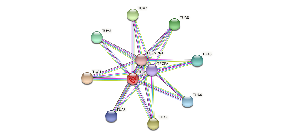 POPTR_0003s12690.1 protein (Populus trichocarpa) - STRING interaction network