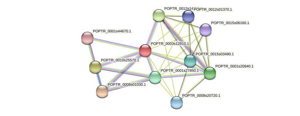 POPTR_0003s12910.1 protein (Populus trichocarpa) - STRING interaction network