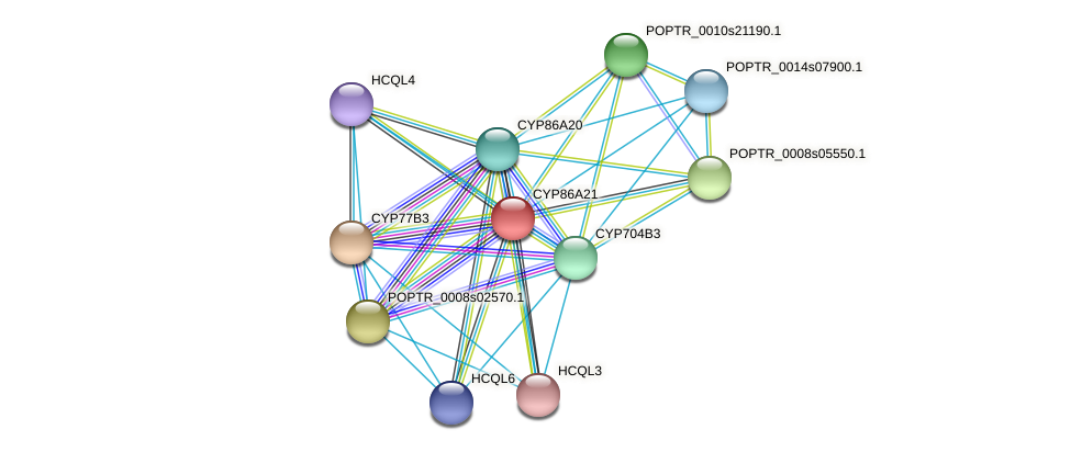 POPTR_0003s12920.1 protein (Populus trichocarpa) - STRING interaction network