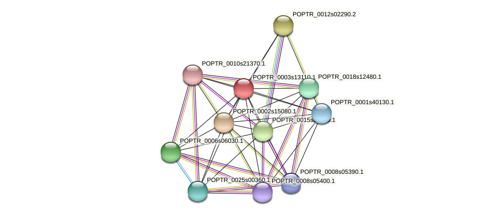 POPTR_0003s13110.1 protein (Populus trichocarpa) - STRING interaction network