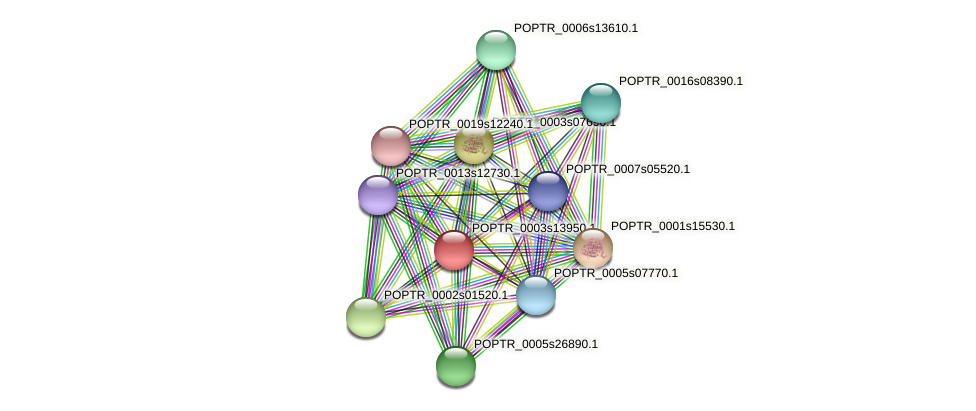 POPTR_0003s13950.1 protein (Populus trichocarpa) - STRING interaction network