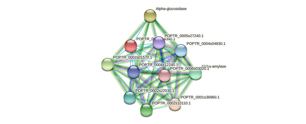 POPTR_0003s14340.1 protein (Populus trichocarpa) - STRING interaction network