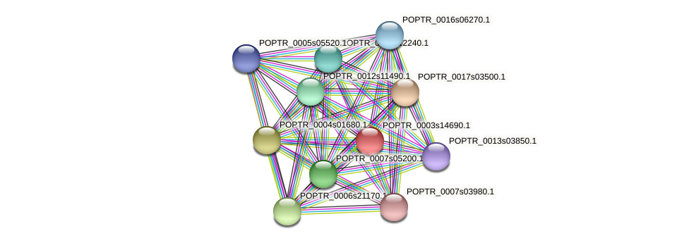 POPTR_0003s14690.1 protein (Populus trichocarpa) - STRING interaction network