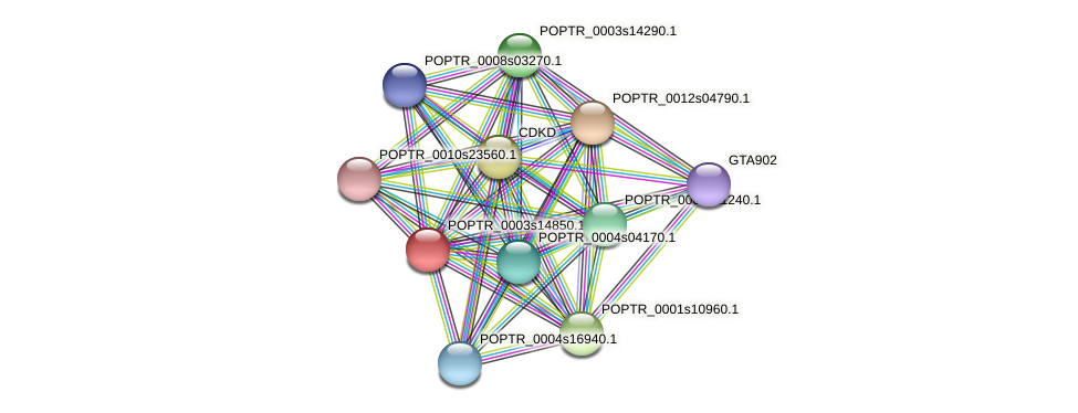 POPTR_0003s14850.1 protein (Populus trichocarpa) - STRING interaction network