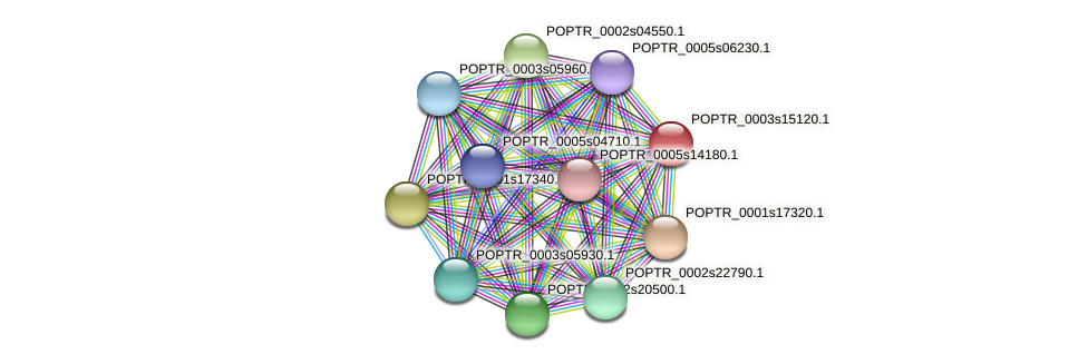 POPTR_0003s15120.1 protein (Populus trichocarpa) - STRING interaction network