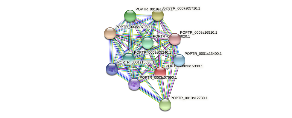 POPTR_0003s15330.1 protein (Populus trichocarpa) - STRING interaction network